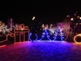 郴州大型户外活动灯光节灯光秀梦幻网红桥