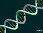 什么情况需做DNA亲子鉴定