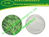 芦荟凝胶冻干粉 200:1 厂家销售 长期供货 质量稳定