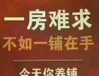耒阳 市中心五一东路鼎尚广场 商业街卖场 10平米