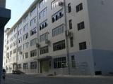 1200平新型厂房出售,交通方便,消防物业水电齐全