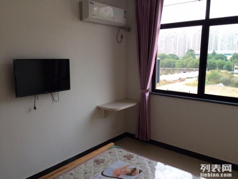 科技园公寓 1室 0厅 20平米 整租
