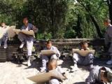 河南正规的少林武术学校一年学费钱
