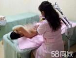 龙岗催乳师坪山通乳师多年经验处理乳腺不通奶水不足等