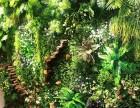 武汉户外绿化养护小区街道花园绿化养护托管本地园林绿化工程施工