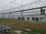 潍坊温室大棚哪家好-甘肃生态智能温室大棚