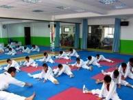 广州专业成人、少儿跆拳道培训班,较好的培训学校