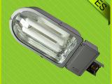 佛山路灯  节能照明路灯 无极路灯灯具 小区道路照明