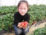 上海农家乐推荐 吃土菜逛田园 挖红薯摘桔子钓大鱼