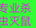 北京专业杀虫灭蟑灭鼠除四害一次见效无效退全款省钱
