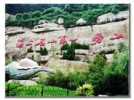 青岛旅行社开发区旅行社推荐 青岛崂山山水纯玩一日