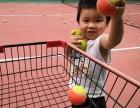 爱尚网球俱乐部 专业网球培训,私教,暑期班