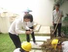 博罗白蚁防治,木屋白蚁防治方法,工厂白蚁防治