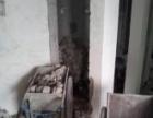 南京专业拆除 地面瓷砖拆除,隔断墙拆除,橱柜拆除