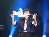 东莞晚会场地布置策划公司 开业庆典策划 舞龙舞狮变脸魔术提供