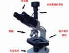 郑州高清一滴血水产养殖美容螨虫检测仪