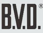 BVD内衣加盟