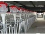 恒丰提供畜禽用自动化料塔料线 养殖存储设备