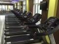 通州帕沃塞克健身房