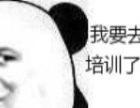 元旦约 惠 博汇