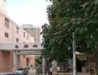 学区房急售金雅都小区三室两厅两卫带阳台三楼133.52平米金雅都