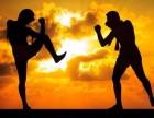 北京专业散打跆拳道搏击培训班拳击教学培训班防身术培训