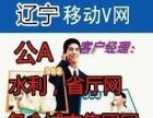 辽宁沈阳集团V网,公A水利电力局各个集团、