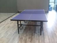 儿童,成人专业乒乓球培训,乒乓球练习,乒乓室租用