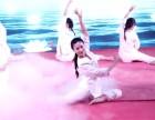 河南瑜伽培训品牌郑州瑜伽教练培训哪家好