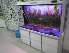 深圳福田专业鱼缸鱼池清洗 鱼缸漏水维修 鱼缸租赁