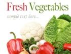 上海蔬菜配送服务有限公司 农副产品配送 肉类配送