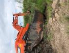 水陆挖掘机出租 水上挖机出租 沼泽地挖机出租
