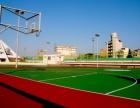 专业塑料跑道 硅pu篮球场 人造草坪等