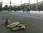临汾市奇德网球培训