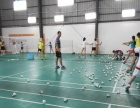羽毛球暑期训练营第三期招生