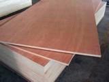 供应多层胶合板 家具防滑胶合板