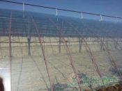 五层农膜批发商山东优质的五层PO膜生产基地