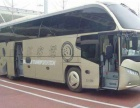 从-九江到宁德的客车(汽车)大概需要多长时间?票价多少钱?