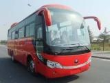 漳浦51座金龙客车承接火山岛六鳌旅游包车
