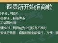 深圳智库创业西贵所789号加盟 旅游/票务