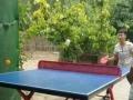 厂家直销乒乓球台 可货到付款 全国包邮