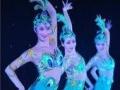 济宁巡展舞蹈,杂技力量,泡泡秀表演,乐队演出,主持