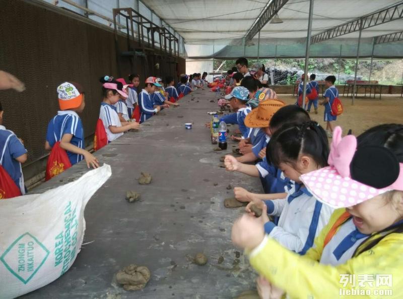 深圳周边较一家4A风景区农家乐 东莞松湖生态园