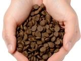 英国进口猫粮凯特贝斯现在招代理