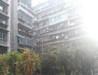 中山东路文昌北路 2室2厅90平米 精装修小区环境安全出行方