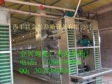 提供专业化的养鸡设备,高效率蛋鸡笼就选华兴鸡笼养殖设备
