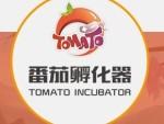 番茄孵化器游戏加盟 百款手游 多种创收-全球加盟网