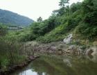 金口河区共安乡 土地 33.3万平米