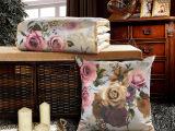 2015春夏新款上市 彩绘冰丝抱枕被子 空调被两用靠枕 特价批发