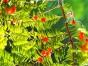 济南旅游景点资产评估,房屋树木价值评估,景区融资贷款评估